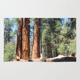 Giant Sequoias Rug