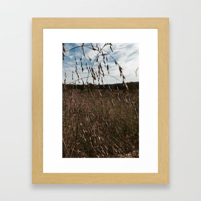 Cottonfield Number 1 Framed Art Print