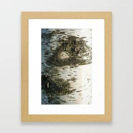 Birch Bark I Framed Art Print