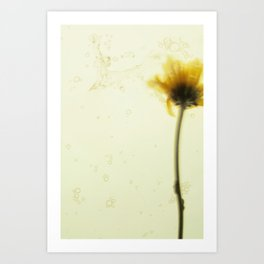 flower dance Art Print
