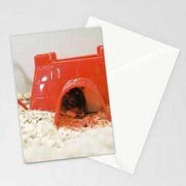 Pet Shop Mice Stationery Cards