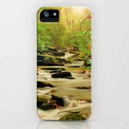 Fall Along Rock Castle iPhone Case