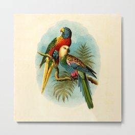 Vintage Parrots Metal Print