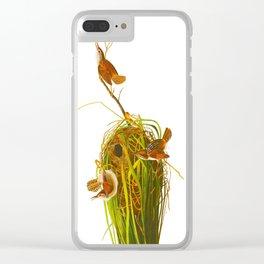 Marsh Wren Clear iPhone Case