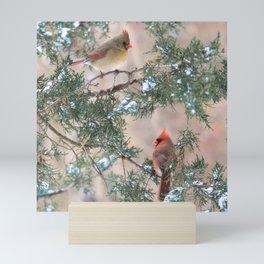 Winter Pair Cardinals (v) Mini Art Print