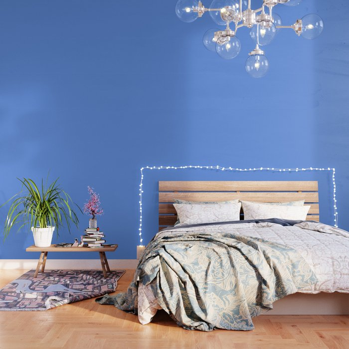 color cornflower blue Wallpaper