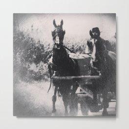 Amish Horse Team  Metal Print