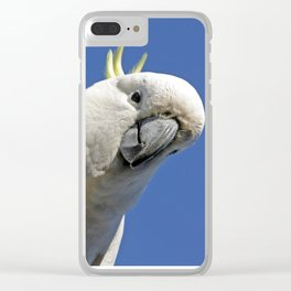 Cockatoo sees you while your sleeping Clear iPhone Case