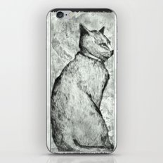 Wise Old Cat iPhone & iPod Skin
