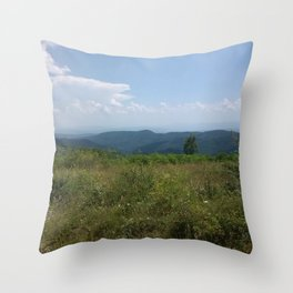 Meadow and mountains in the distance Throw Pillow