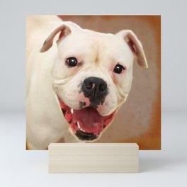 White Boxer Dog Mini Art Print