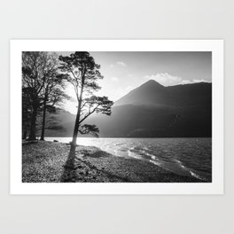 Silhouetted tree on the shore of Buttermere with mountains beyond. Lake District, UK. Art Print