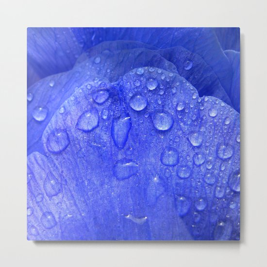 blue petal drops I Metal Print