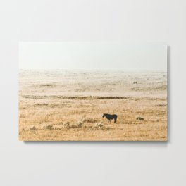 Breakfast in the Fog Metal Print