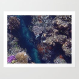 The Heart of the Reef Art Print