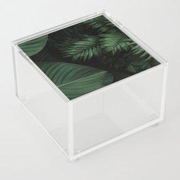 Tropical Beauty // Tropical Boho Leaves meets Minimalist Patterns Acrylic Box