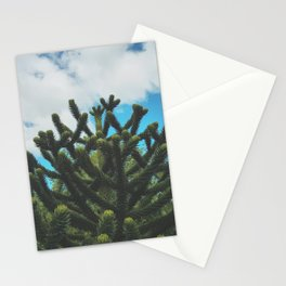 The Monkey's Puzzle Stationery Cards