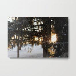 Snow in the Sun Metal Print