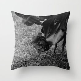 rose black and white Throw Pillow