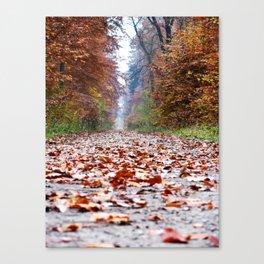 Walking In An Autumn Wonderland Canvas Print