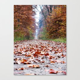 Walking In An Autumn Wonderland Canvas Print