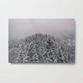 Snowy winter in the woods Metal Print
