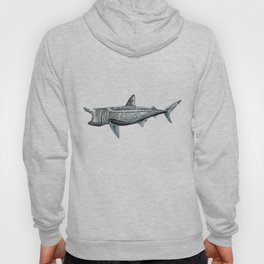 Basking shark (Cetorhinus maximus) Hoody
