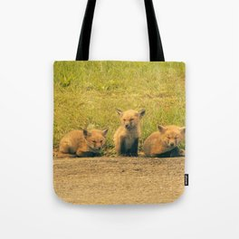 Baby Foxes Tote Bag