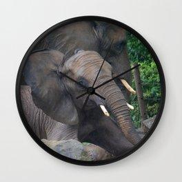 Elephants Eye Wall Clock