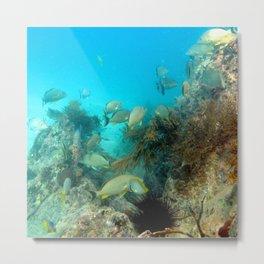 Watercolor Seascape, St John 33, USVI Metal Print