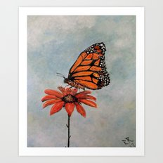Majestic Monarch Butterfly Art Print