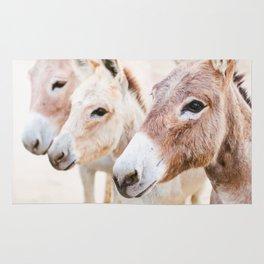 Three Donkeys in Baja, Mexico Rug