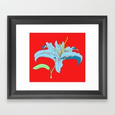 Lily I Framed Art Print