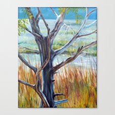 Tree in the wetlands Canvas Print