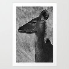 Profile Art Print