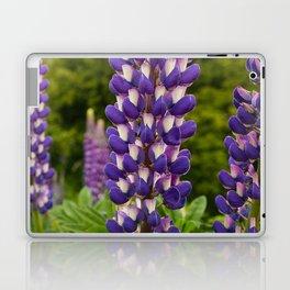 Lupine Flowers in New Zealand Meadow Laptop & iPad Skin