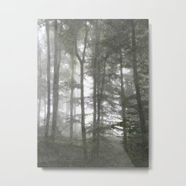 Forest Illustration Metal Print
