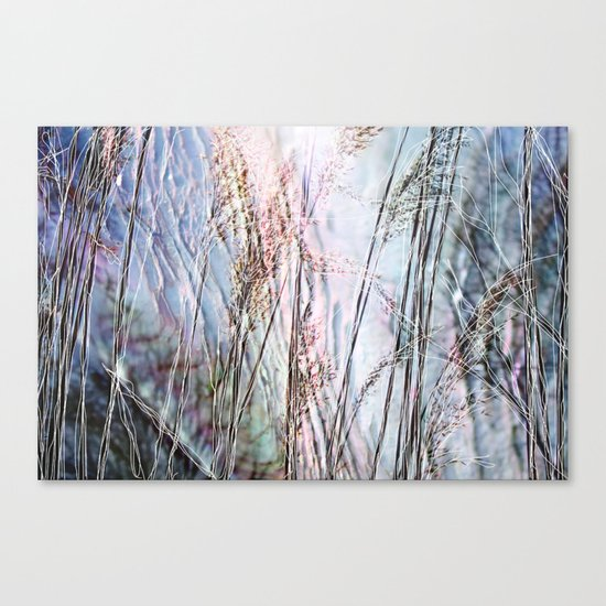 Magical Reeds - JUSTART (c) Canvas Print