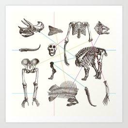 Puzzle bones Art Print