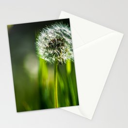 Blow and make a wish Stationery Cards