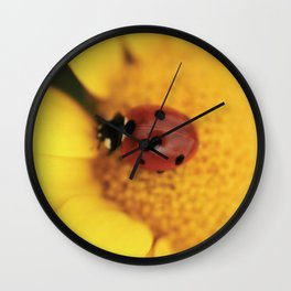 Ladybug on yellow flower - macro still life - fine art photo for interior design Wall Clock