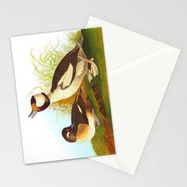 Buffel Headed Duck John James Audubon Vintage Scientific Birds Of America Illustration Stationery Cards