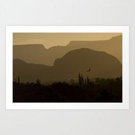 Californian desert Art Print