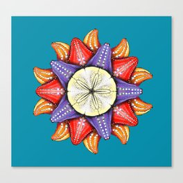 A Dollar for Your Sea Stars Canvas Print