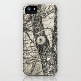 Young oaks iPhone Case