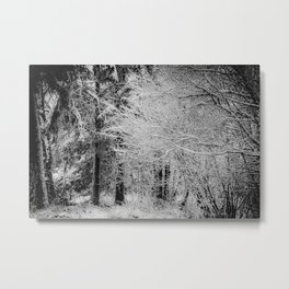 Winter Landscape in Black and White Metal Print