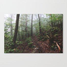 Yokun Ridge I Canvas Print