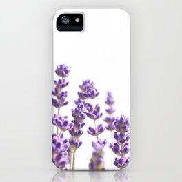 Purple Lavender #4 #decor #art #society6 iPhone Case