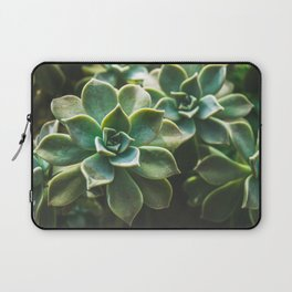 Botanical Gardens II - Succulents #423 Laptop Sleeve