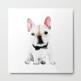 Little Gentleman French Buldog Metal Print